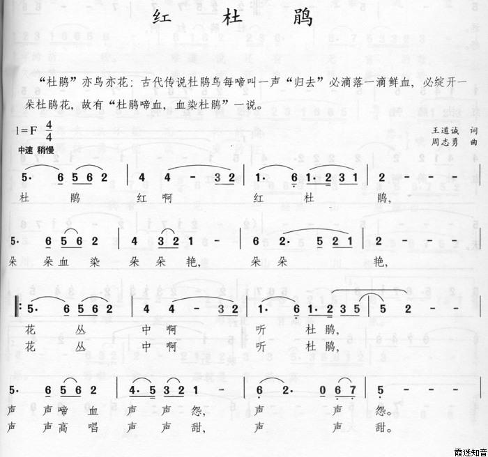 红杜鹃(简谱 歌谱)—吴碧霞