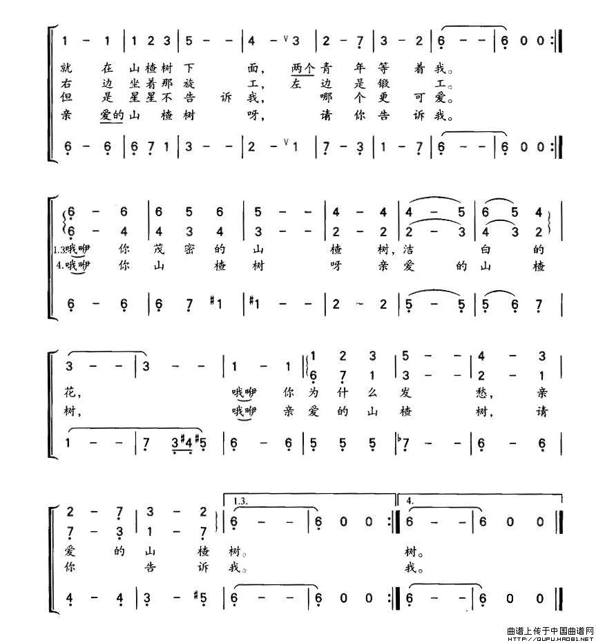 山楂樹 任策編配女聲領唱 合唱譜 前蘇聯