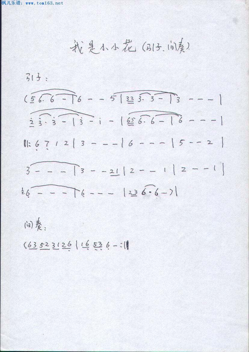 我是小小花 简谱 歌谱