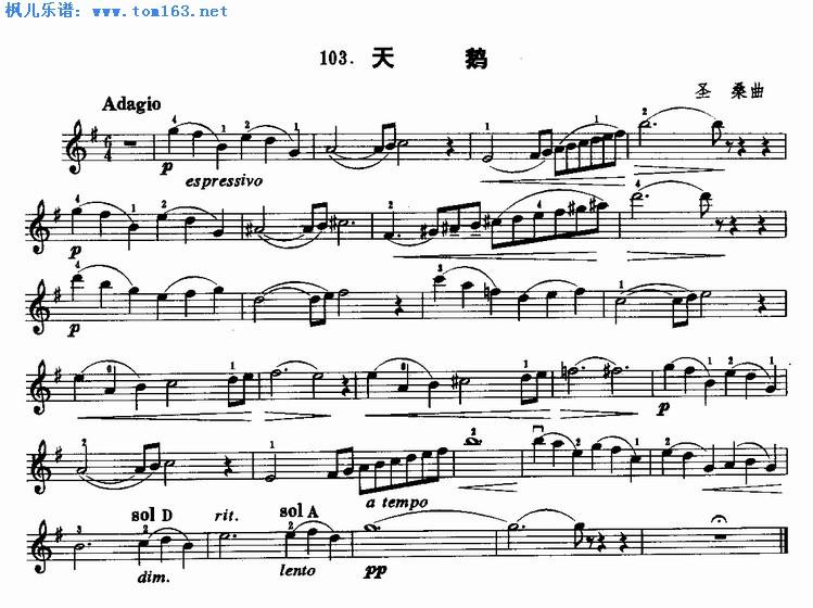 天鹅(圣桑曲)小提琴谱