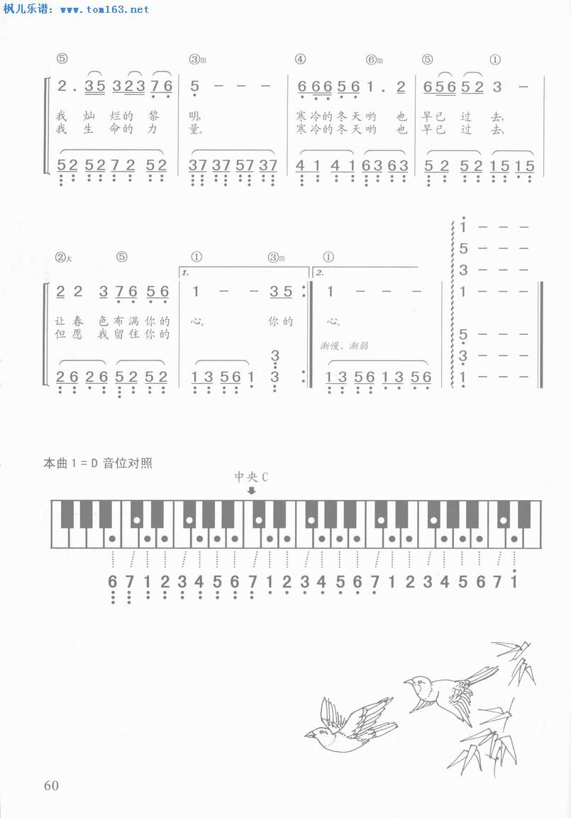 真的好想你 钢琴简谱—周冰倩