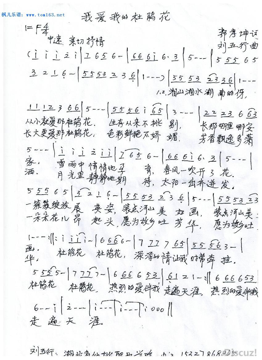 我爱我的杜鹃花 简谱 歌谱